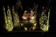 exterior-light-design-fountain-trees